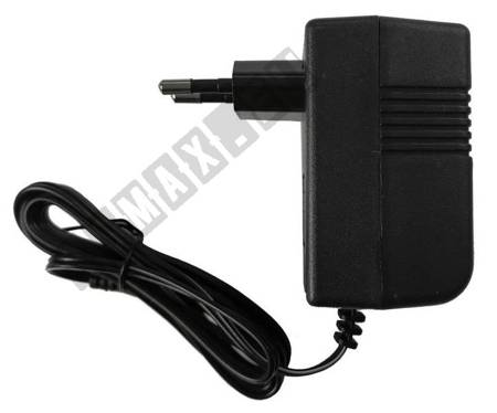 Electric Ride On Car Battery Charger 6V