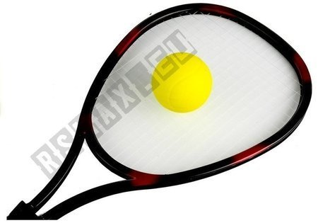 Racket Sports Game + Ball Outside Activity